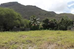Rivière Noire terrain de 1087M2 situé à la Plantation Marguery. - Land on Aster Vender
