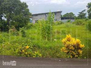 Land for sale in Montagne_Blanche - Land on Aster Vender