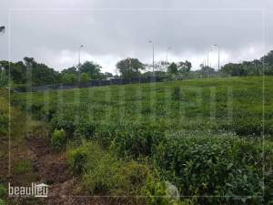 Residential land of 10 perches for sale in Nouvelle France - Land on Aster Vender