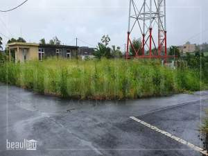 Residential land of 7 perches in MORC VRS , Plaine Des Papayes  - Land on Aster Vender