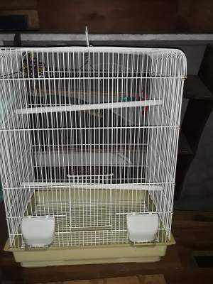 Bird cage - Pets supplies & accessories on Aster Vender
