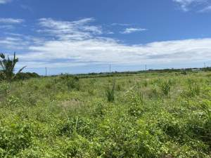 Residential land of 50 perches in Bain Boeuf - Land on Aster Vender