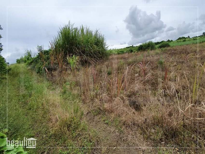 Agricultural land of 1 arpent 4 perches is for sale in La Flora