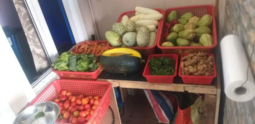 Légumes frais à vendre à Pailles