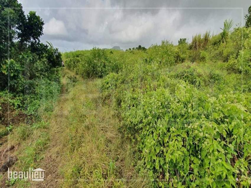 Agricultural land of 76.5 perches for sale in Mont Ida