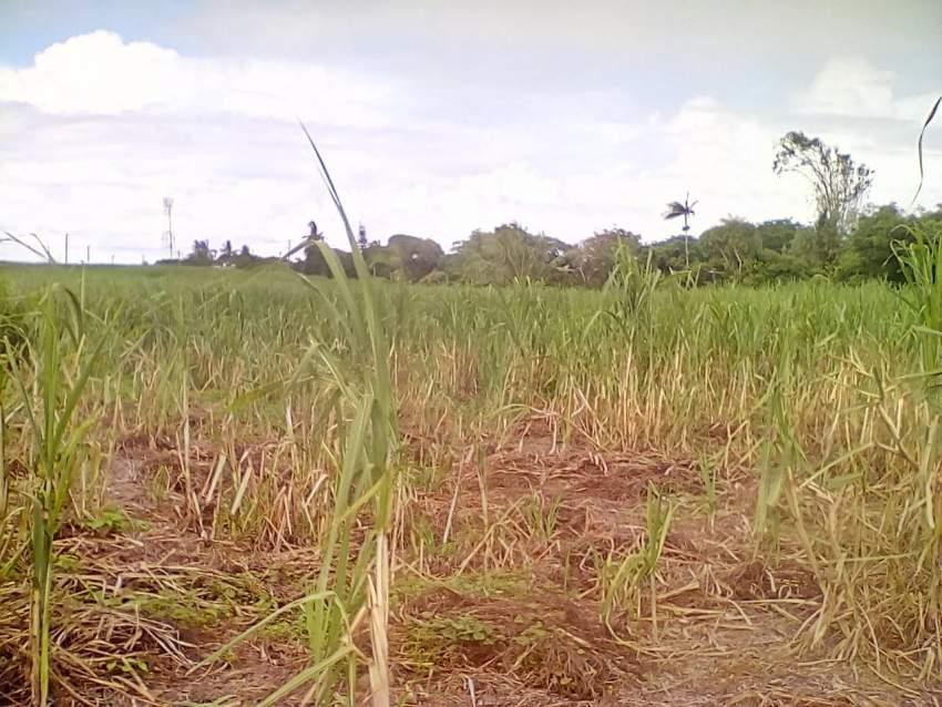 Land at Gokhoola