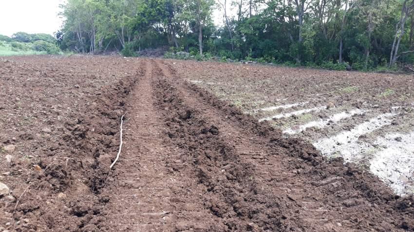 AGRICULTURAL LAND (URGENT)