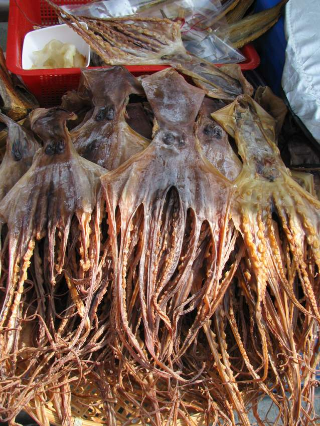 Ourite sec_dried octopus