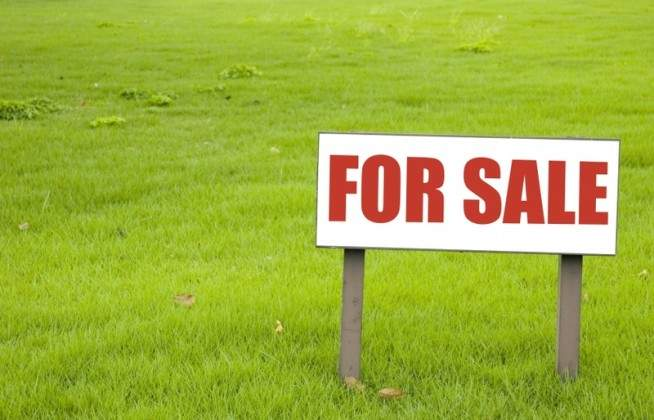 Land for sale at PAMPLEMOUSSE (R) MANGOUT