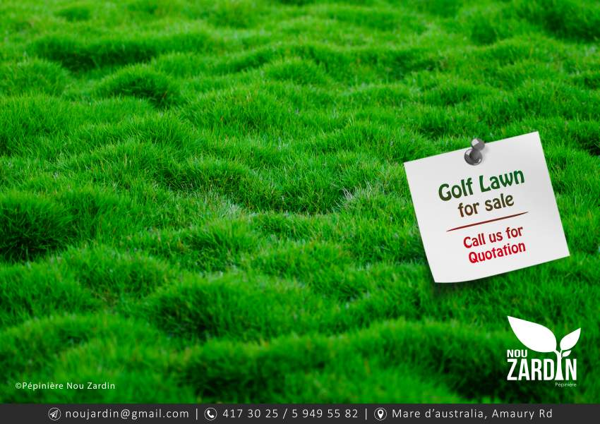 Golf Lawn - Plants and Trees at AsterVender