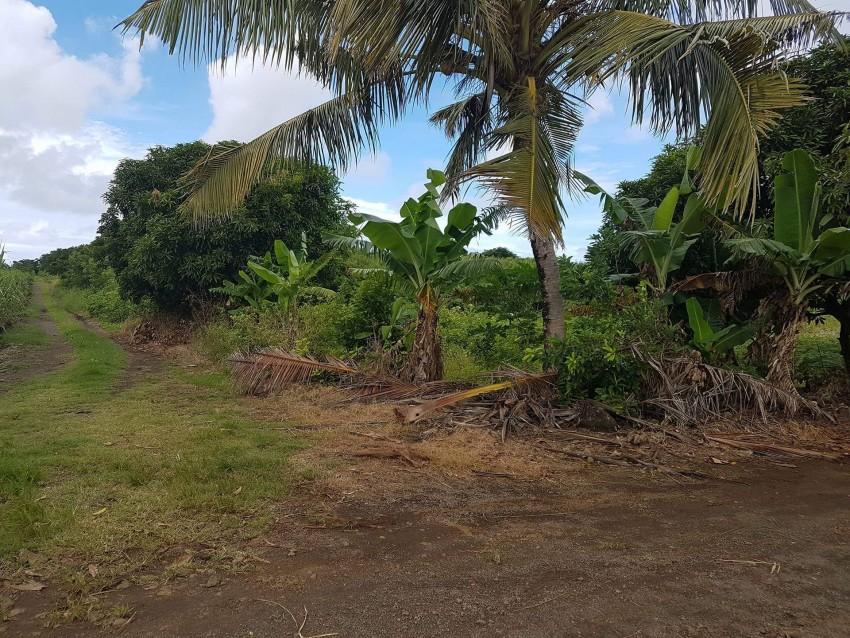 45 Ps Residential land in St François, Calodyne