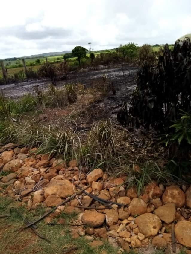 Pamplemousse terrain agricole
