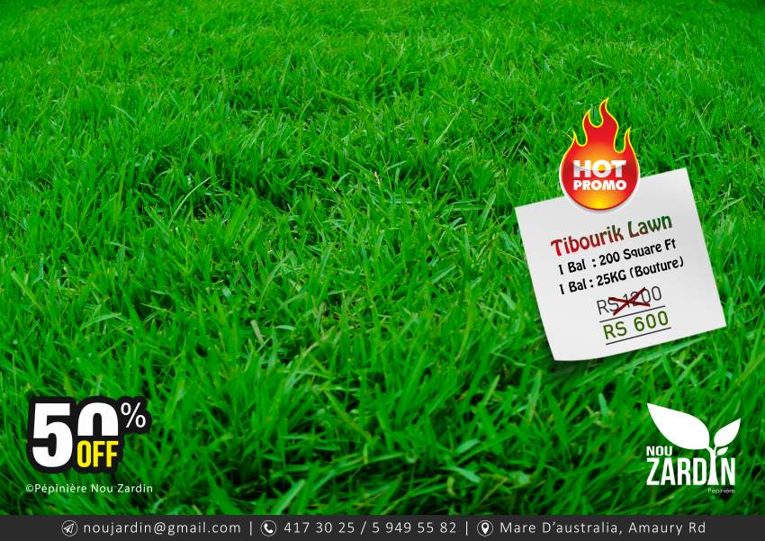 Tibourik Lawn Promo - 50% Off