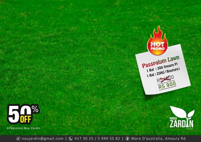 Passpalum Lawn Promo - 50% Off
