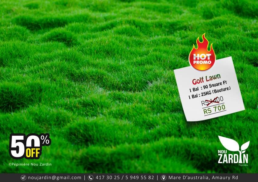 Golf Lawn Promo - 50% Off