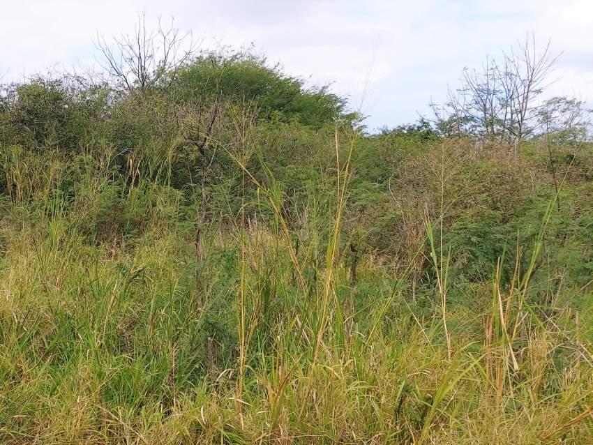 (Ref : MA7-553) Terrain résidentiel proche des commoditès