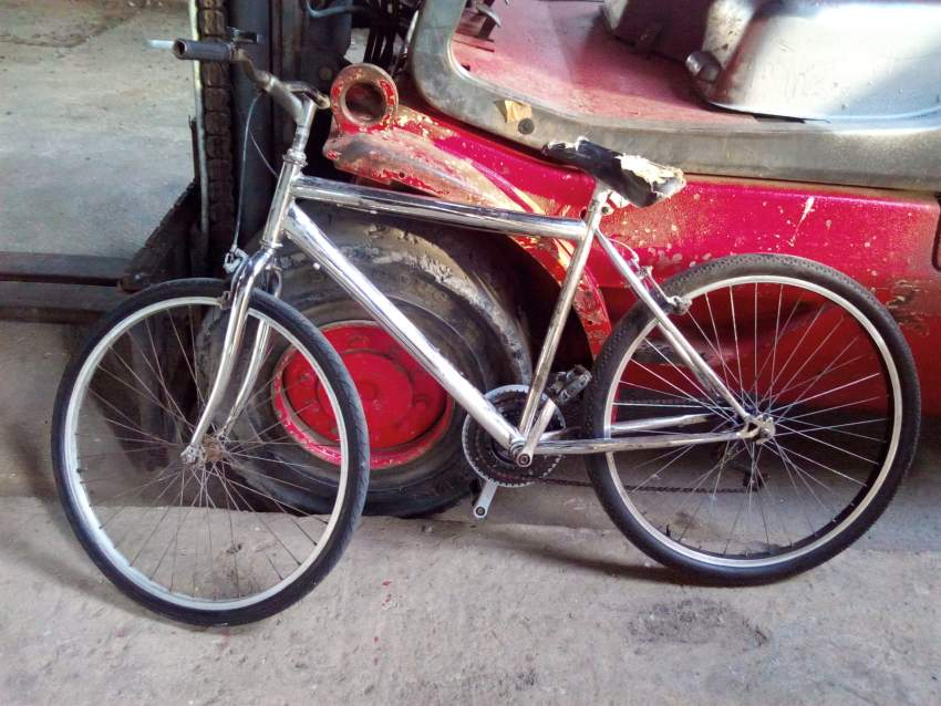 Mountain/Bike