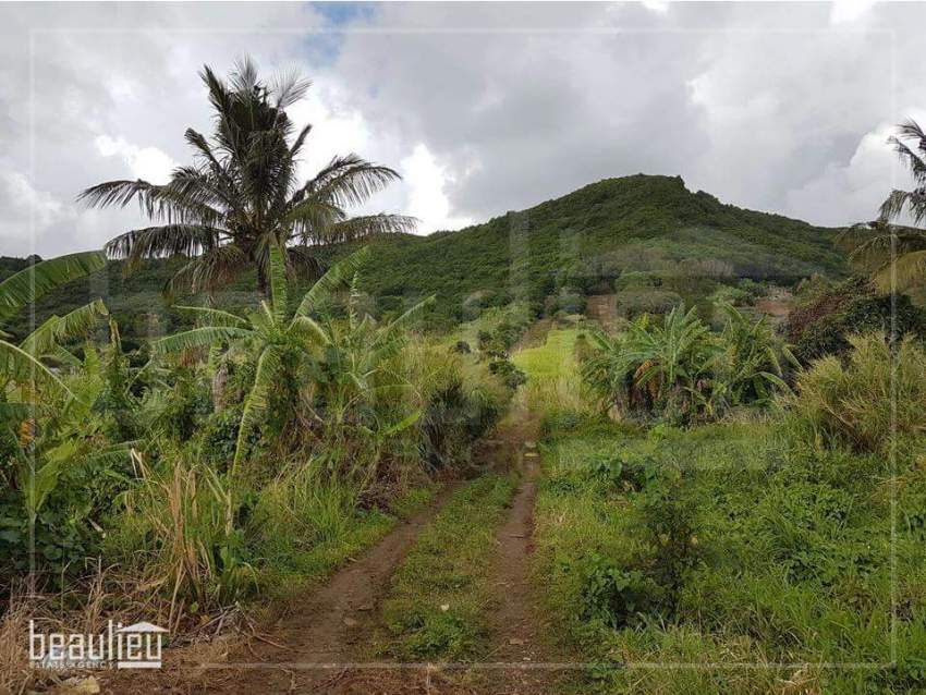 **50 Perches Agricultural land, Congomah** - Land at AsterVender