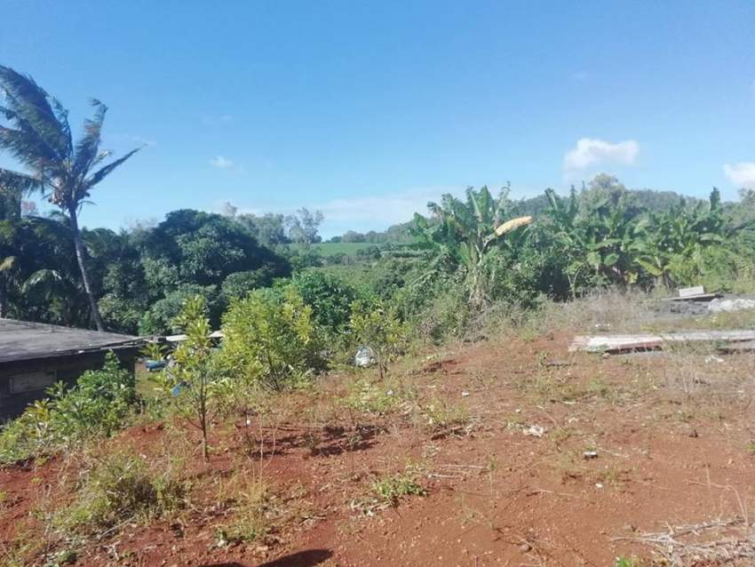 peaceful  land at Royal Road, Congomah @ Rs 35,000/perche negotiable.