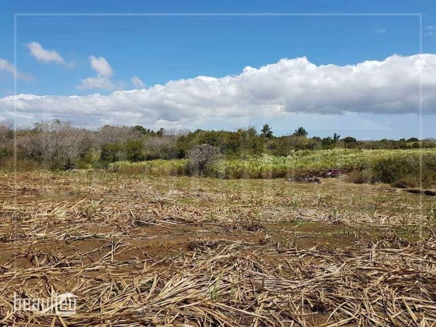 Agricultural land of 1 A 88 Ps,  Réunion Maurel