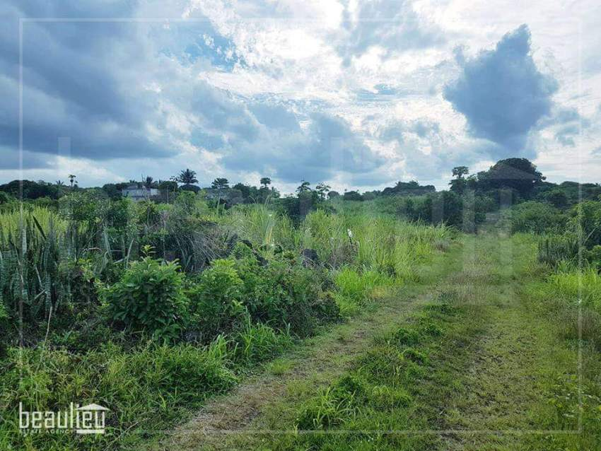45,5 Perches Agricultural land for sale in Bois d'Oiseaux
