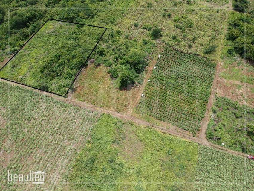 Two plots of 24 and 20 perches,  Reunion Maurel - Land at AsterVender