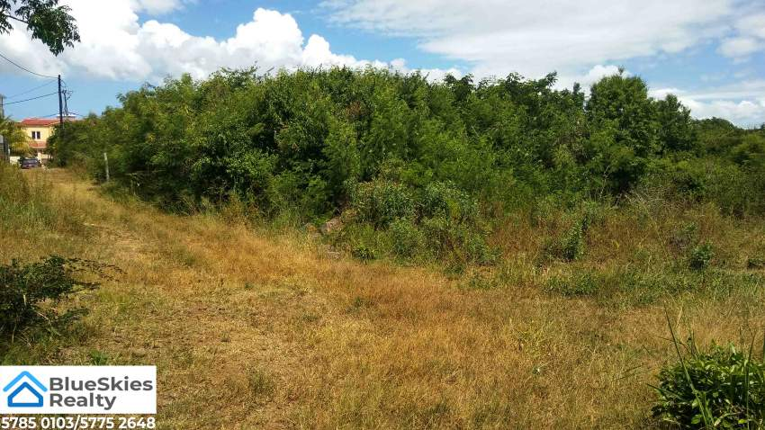 Residential Land 37 Perches Pereybere - Land at AsterVender
