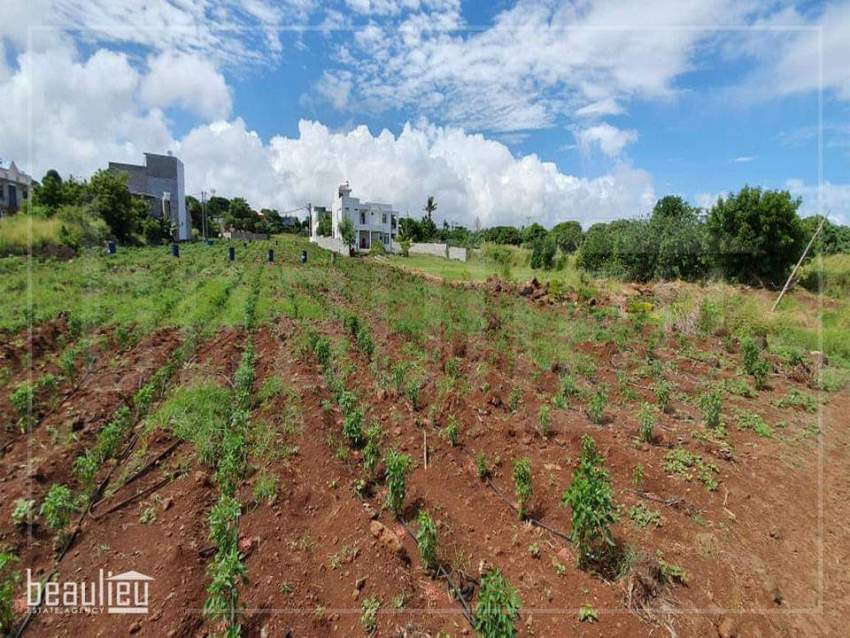 Residential land of 7 perches in Triolet - Land at AsterVender
