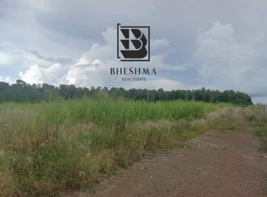Plot for sale in Royal Road, Beau Plateau. Semi Agricultural.