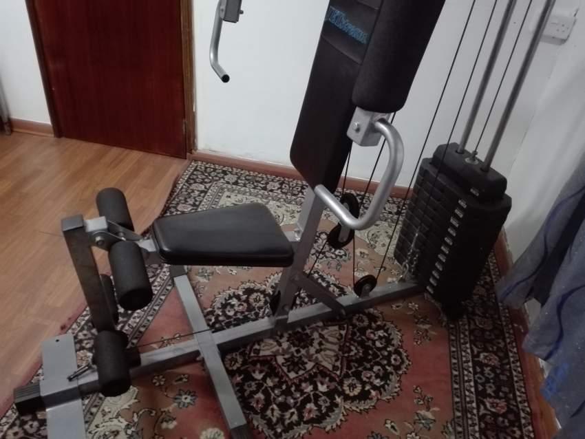 Home gym/multigym