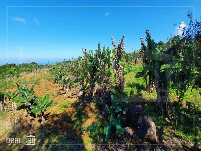Agricultural land of 70 perches is for sale in Grand Bois - Land at AsterVender
