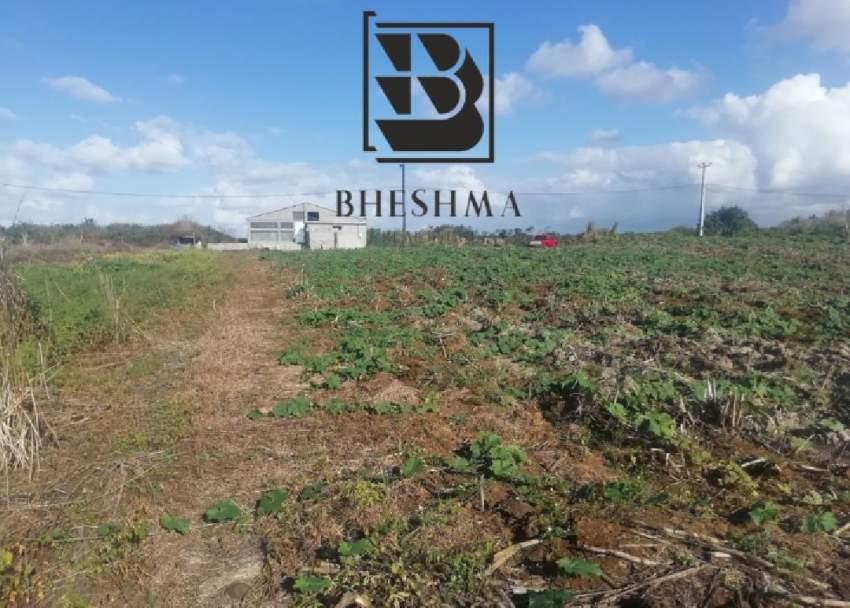 Agricultural plot at Ile D'Ambre 1 arpent 4 perches @ Rs 900,000.