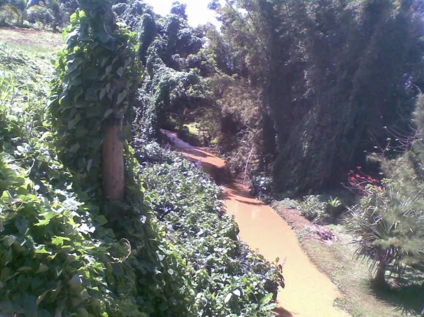 Moka terrain de 1677M2 (441 toises) situé dans un écrin de verdure