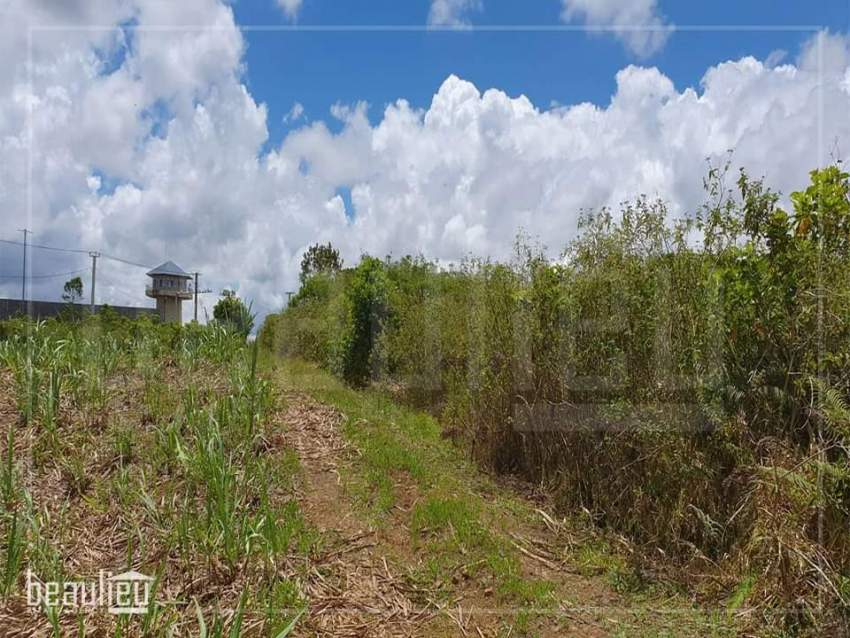 Agricultural land of 50 perches is for sale  in Melrose - Land at AsterVender