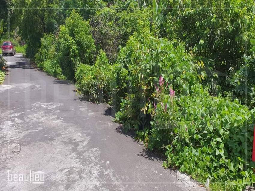 Residential land of 11 perches is for sale in Roche Terre