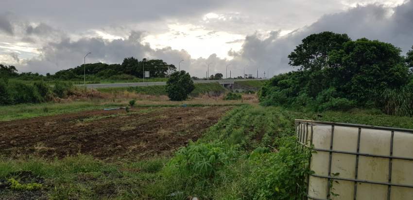 Agricultural land for sale (50 perches)