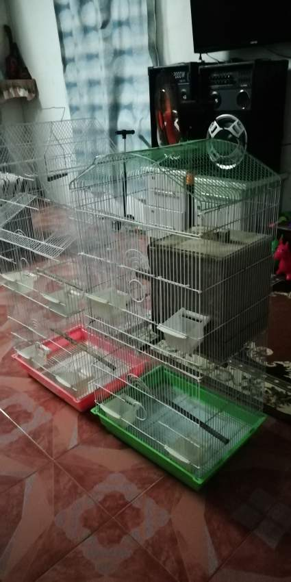 Bird cage - Others at AsterVender