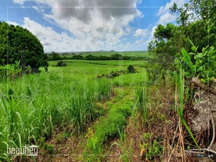 Agricultural land of 3 arpent 63 perches is for sale in Camp De Masque